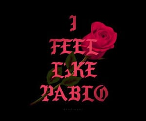 pablo, rose, and red image