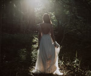 forest, lace, and natural image