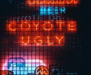 coyote ugly image