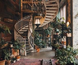 home, plants, and house image