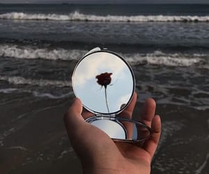 mirror, rose, and beach image