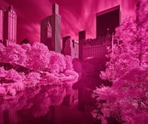 aesthetic, landscape, and pink image