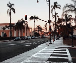 travel, city, and palm trees image