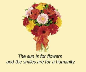 aesthetic, flowers, and quotes image