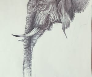 animals, drawing, and art image