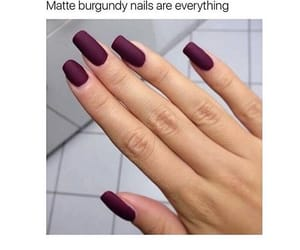 mate, nails, and burgundy image