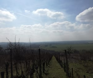 clouds, slovakia, and grapes image