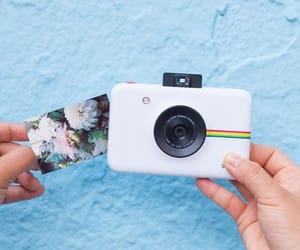 camera, photos, and polaroid image