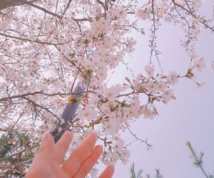 girl, nature, and spring image