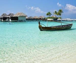 paradise, beach, and blue lagoon image