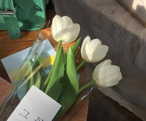 tulips, aesthetic, and bouquet image