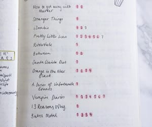 bullet journal and netflix image