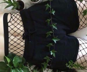 plants, alternative, and black image