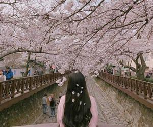 flowers, korean, and japan image