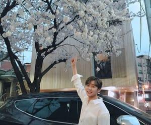 flowers, seungyoun, and kpop image