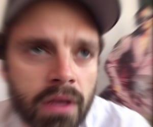 meme, sebastian stan, and reaction image