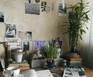 room, plants, and book image