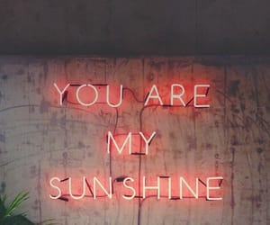 sunshine, quotes, and neon image