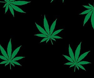 weed and wallpaper image