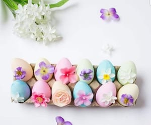 bunnies, decoration, and eggs image