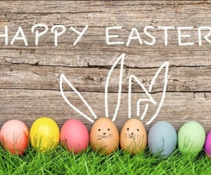 decoration, easter, and pastels image