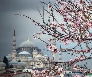 in, istanbul, and mosque image