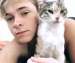luke korns and cats image