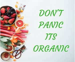 article, organic food, and healthy eating image