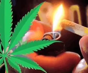 420, cannabis, and weed image