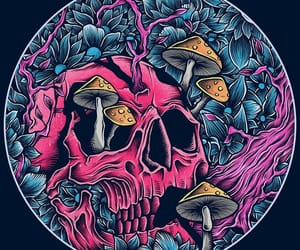 pink, skeleton, and skull image