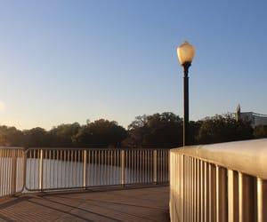 bridge, outside, and trees image
