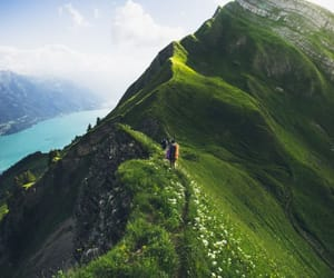 nature, mountains, and green image