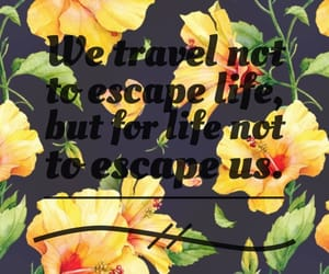 escape, explore, and flowers image