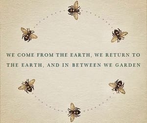 quotes, bee, and garden image
