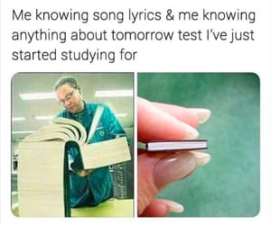 funny, memes, and songs image