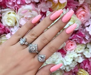 beauty, nail inspo, and claws image