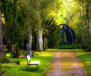 bench, lonely, and nature image