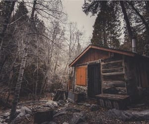 cabin, dark, and forest image