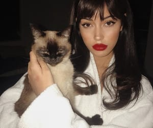 girl, cat, and cindy kimberly image