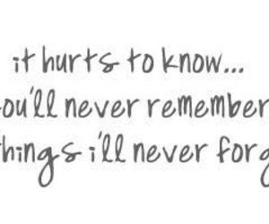 quote, hurt, and forget image