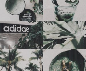 adidas, aesthetic, and green image