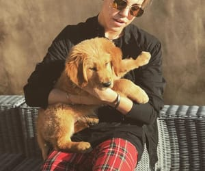 dog, cute, and matthew espinosa image