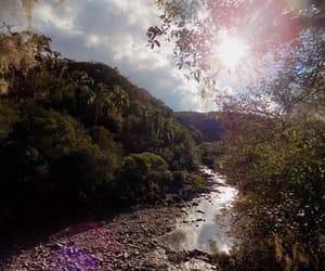 fall, holidays, and nature image