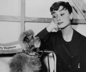 audrey hepburn, actress, and style image