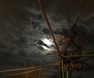 clouds, nature, and night image