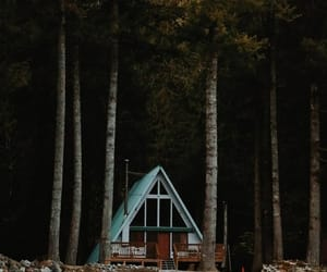 forest, house, and lovely image