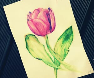 art, blume, and colorful image
