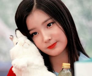 edit, icon, and elris image