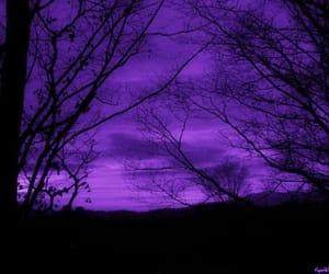 grunge, purple, and aesthetic image