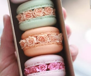 food, ‎macarons, and delicious image